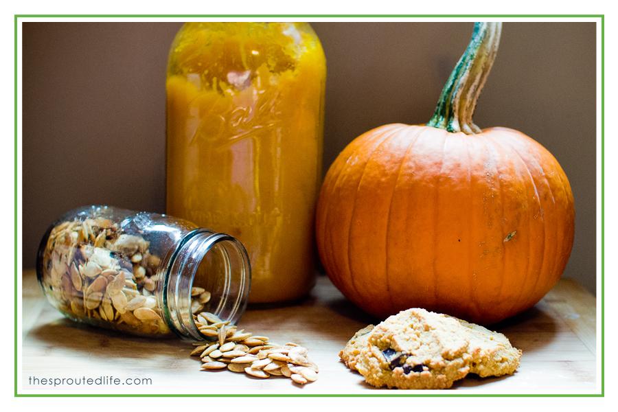 pumpkin, pumpkin & more pumpkin