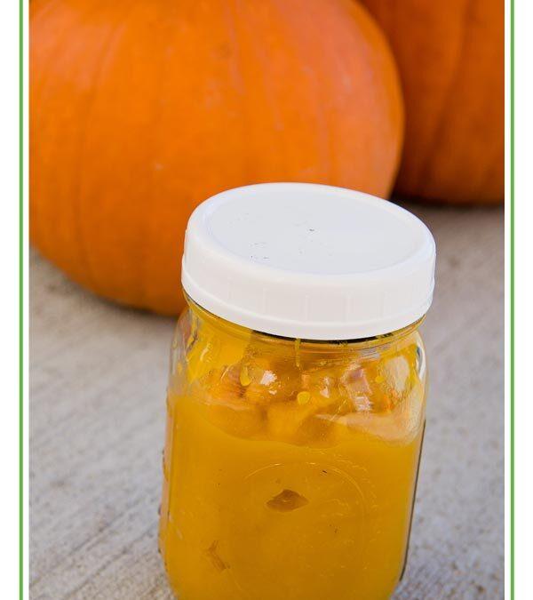 Pumpkin Drop Scones (gluten free, dairy free, grain free)