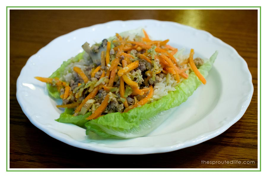 Pork Lettuce Wraps – a Gluten Free, Quick Dinner