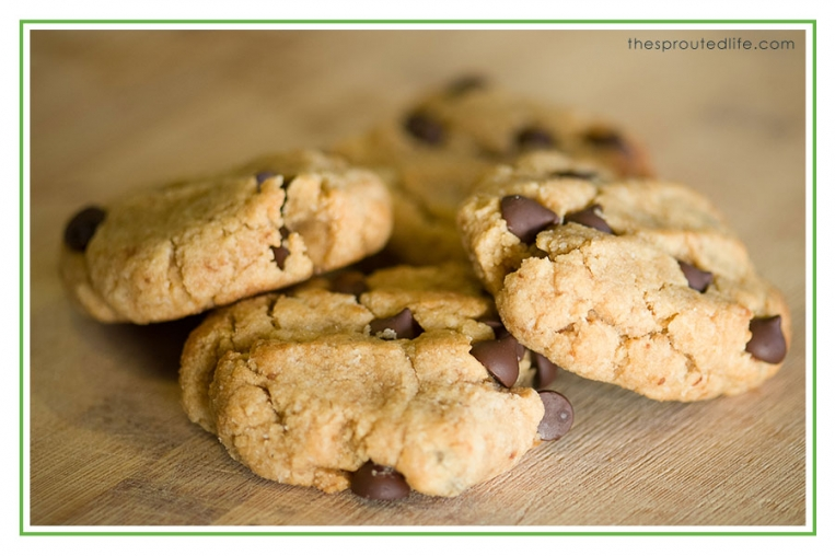 plaeo_Chocolate_Chip_Cookies