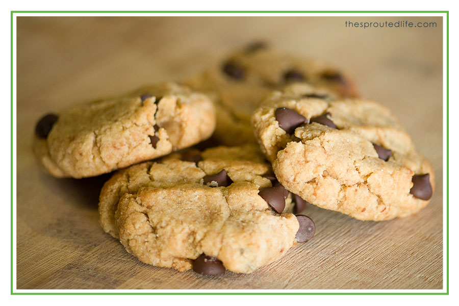 Our Favorite Cookie – Paleo Chocolate Chip Cookies